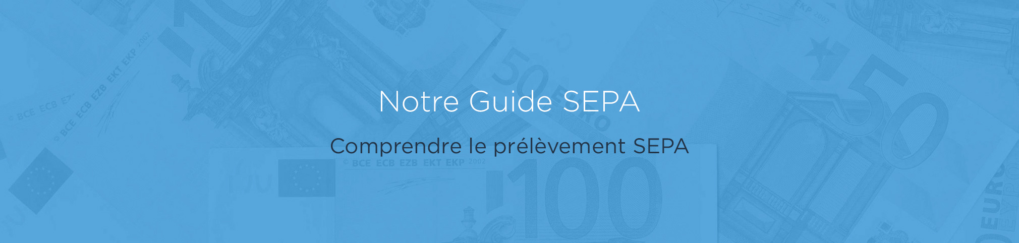 Le Guide SEPA: Une introduction à la zone unique de paiements en Euros